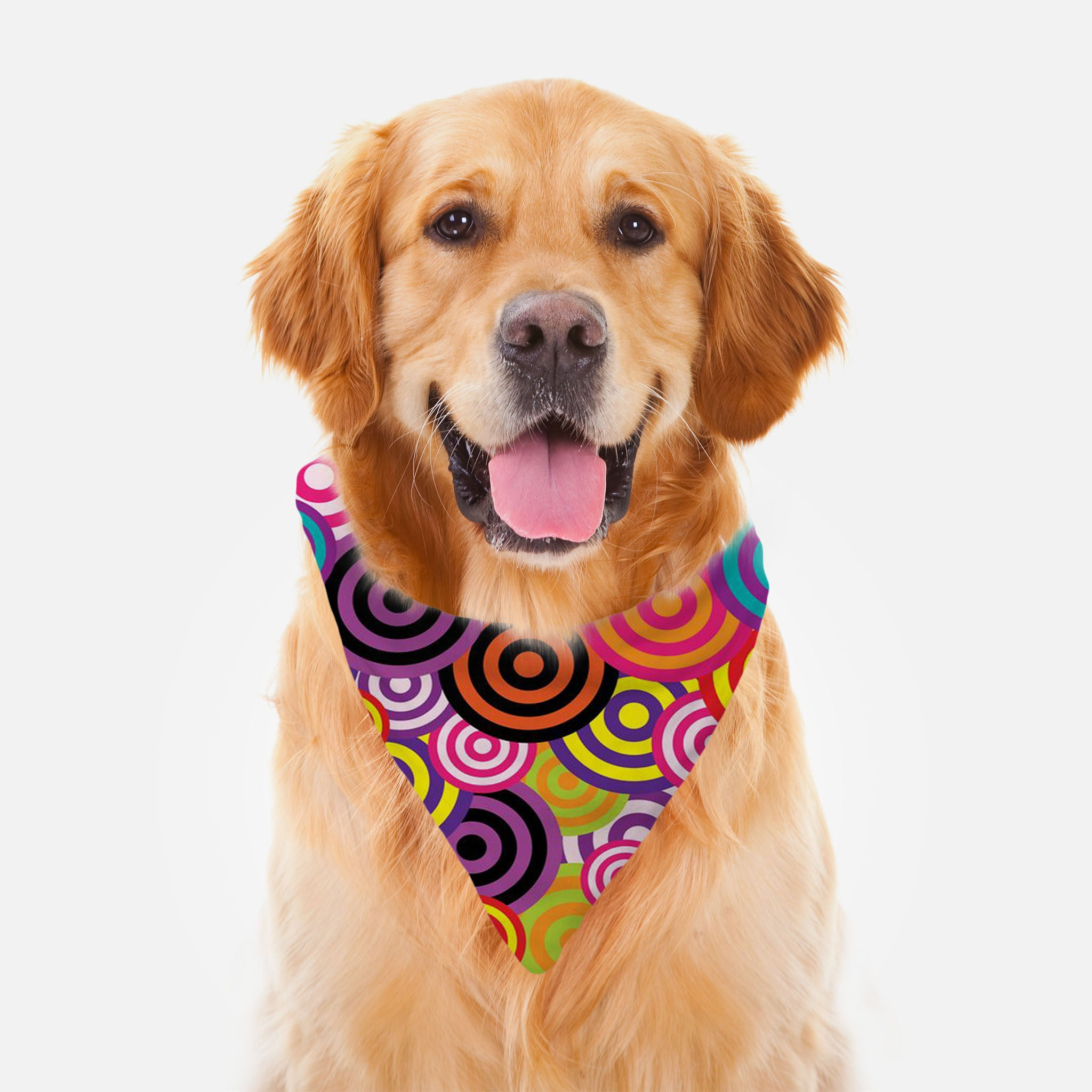 Rainbow Bullseye Ruff Riders Pet Bandana by JoJo (1170018-RR-B) - I WEAR JOJO