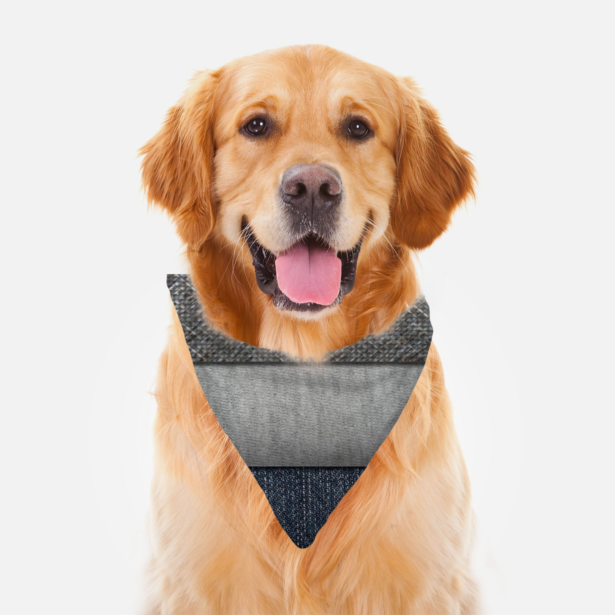 Tri Denim Ruff Riders Pet Bandana by JoJo (1170034-RR-B)