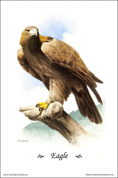 Traveling Animals Poster - Eagle