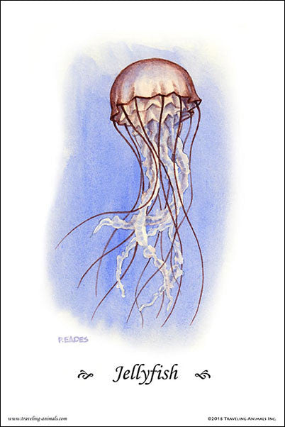Traveling Animals Poster - Jellyfish