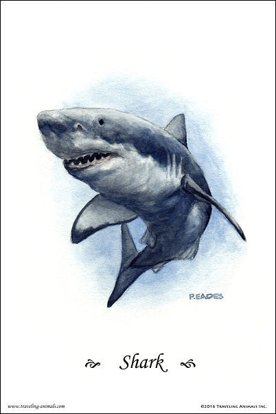 Traveling Animals Poster - Shark