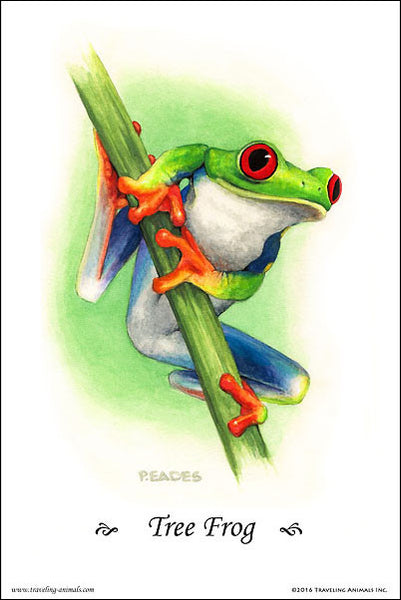 Traveling Animals Poster - Tree Frog