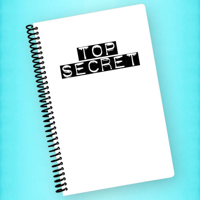 Top Secret Spiral Notebook - Blush Buffalo