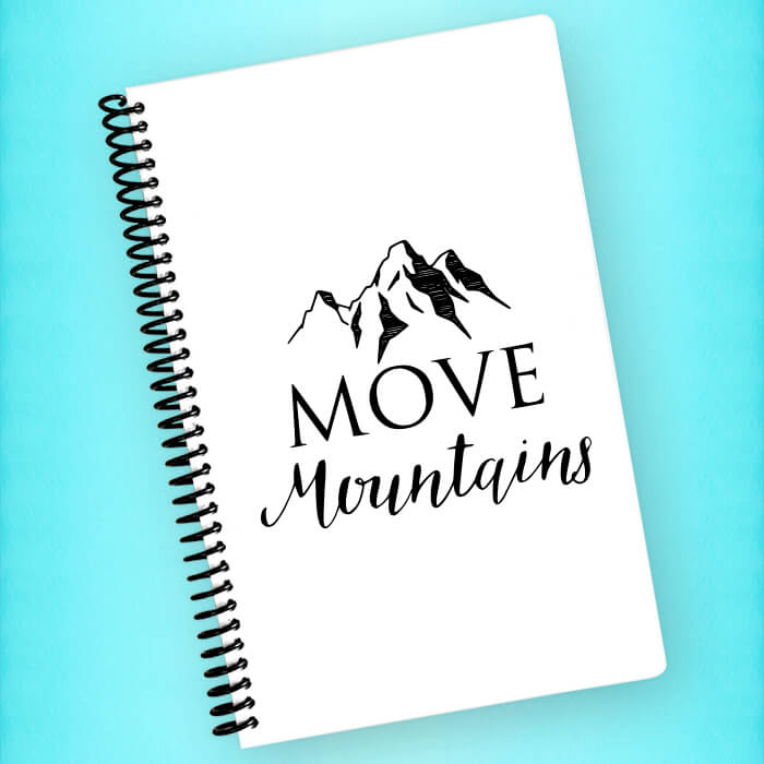 Move Mountains Spiral Notebook - Blush Buffalo