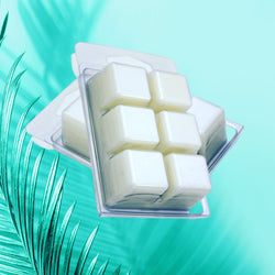 Soy Melts - Tray - Delishause