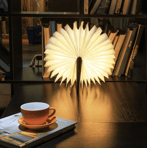 The Most Beautiful Illuminated LED Book