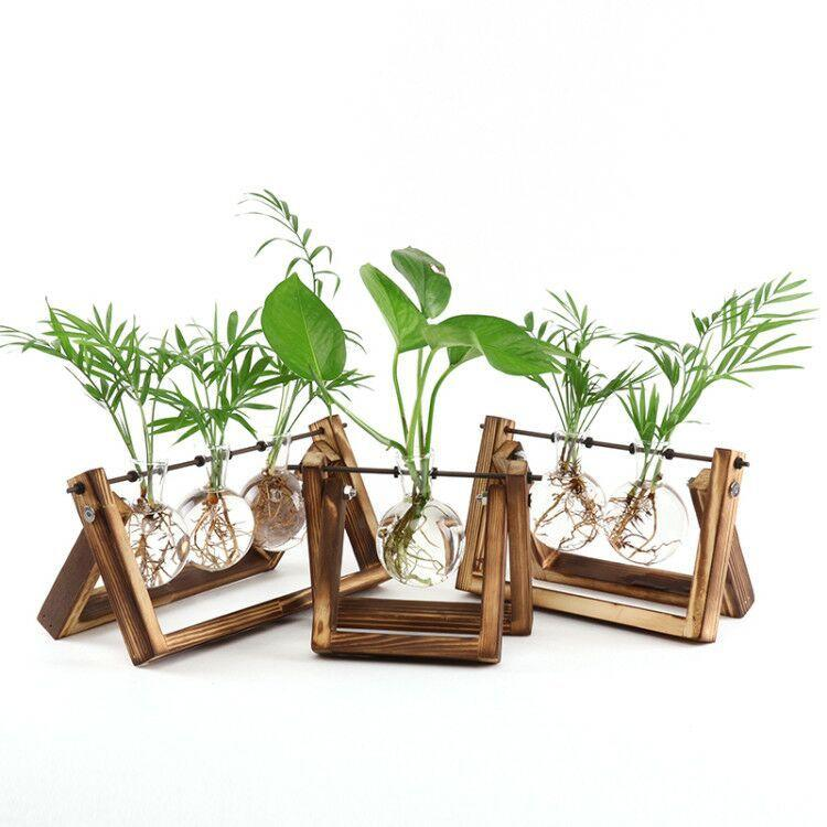 Rustic Plant Terrarium with Wooden Stand