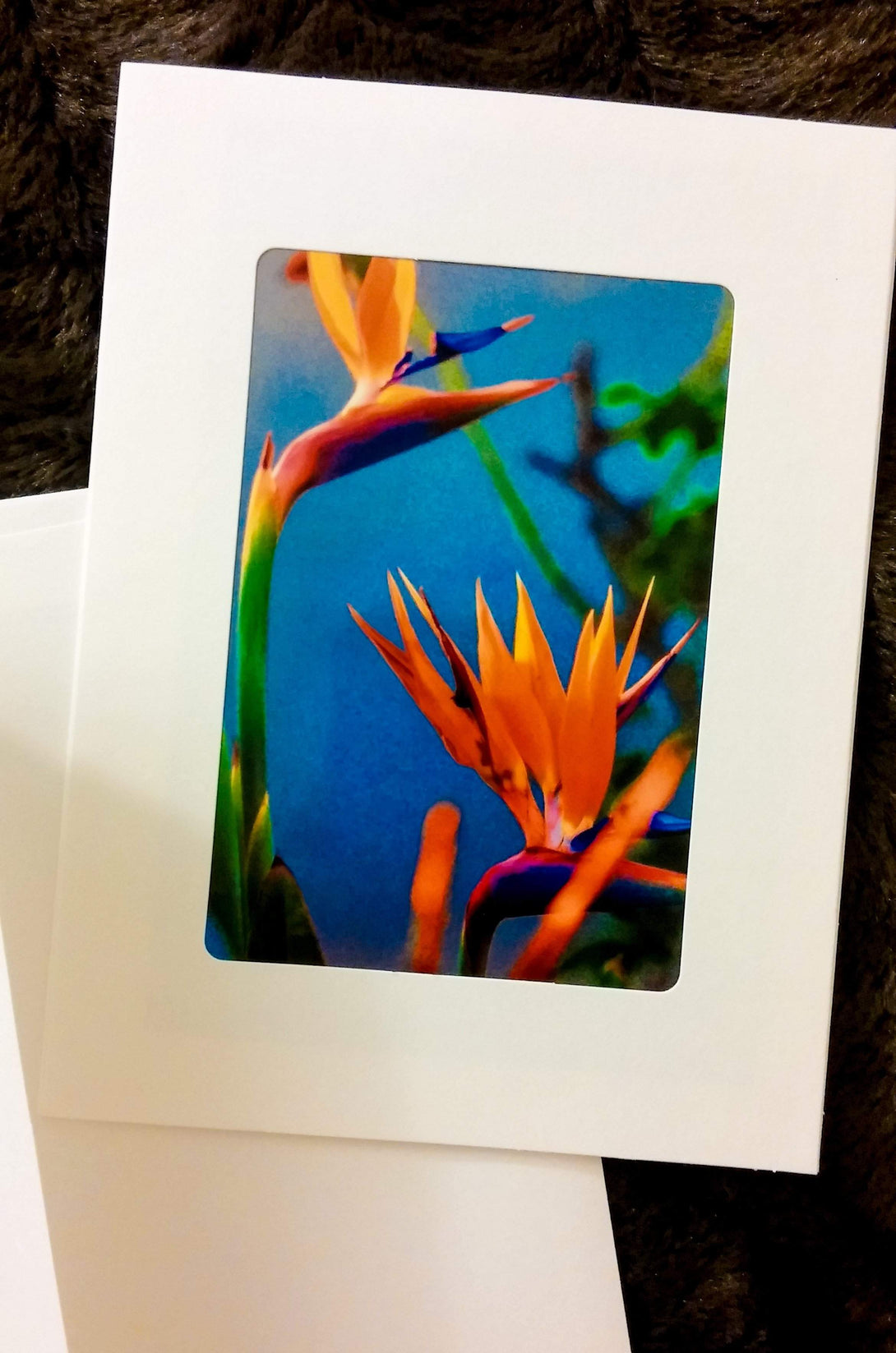 Bird of Paradise Blue Card-Greeting Cards/Prints-HRH Studio Boutique