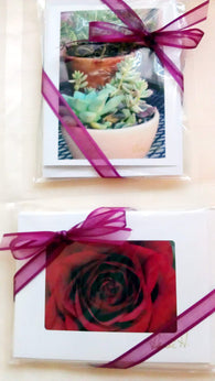Card Gift SET - 5 Cards & Envelopes-Greeting Cards/Prints-HRH Studio Boutique