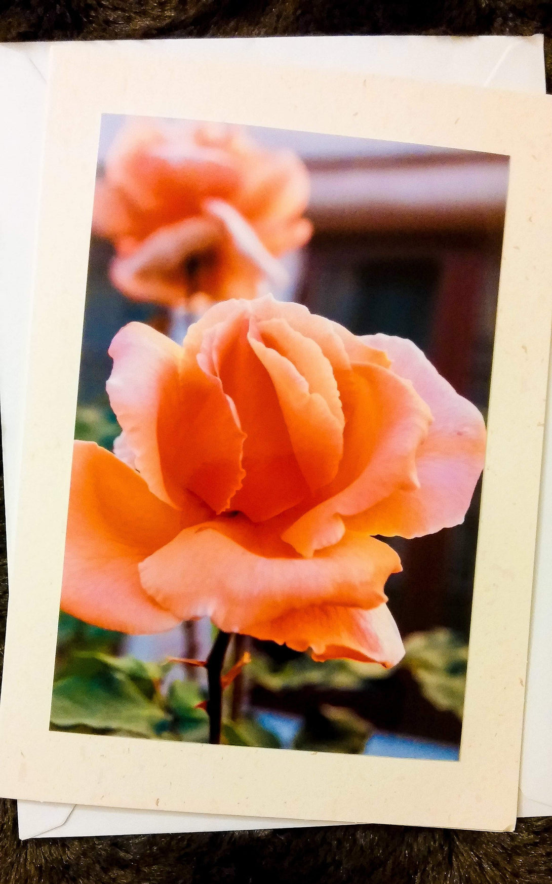 Spanish Rose Card-Greeting Cards/Prints-HRH Studio Boutique