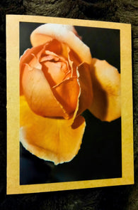 The Rose Bud Card-Greeting Cards/Prints-HRH Studio Boutique