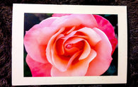 The ROSE Card-Greeting Cards/Prints-HRH Studio Boutique