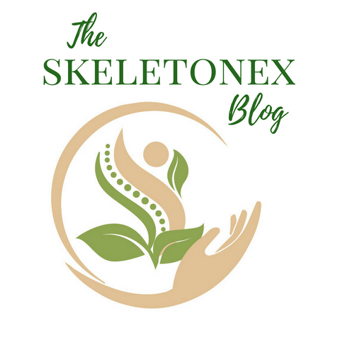 Skeletonex | The Skeletonex Blog | Introduction