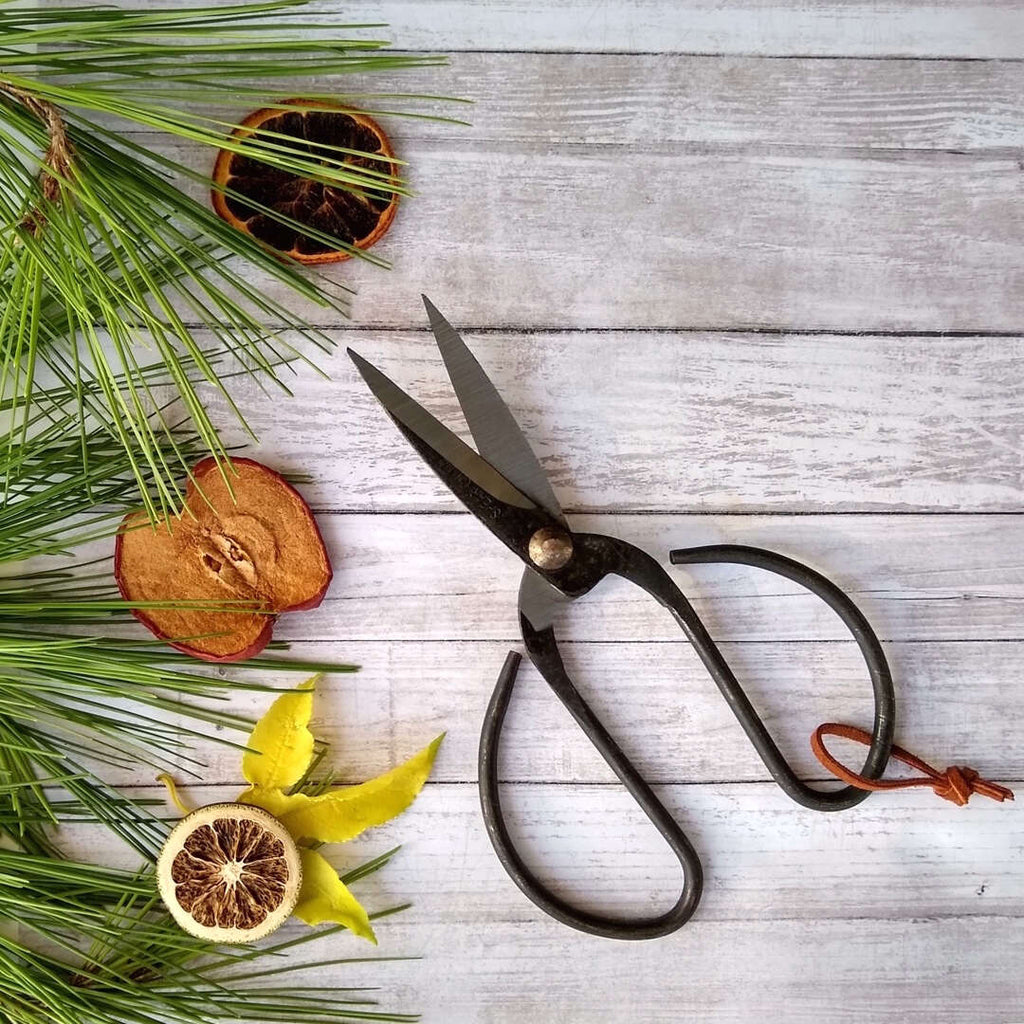 vintage style black steel bonsai scissors with leather hoop on creative backdrop
