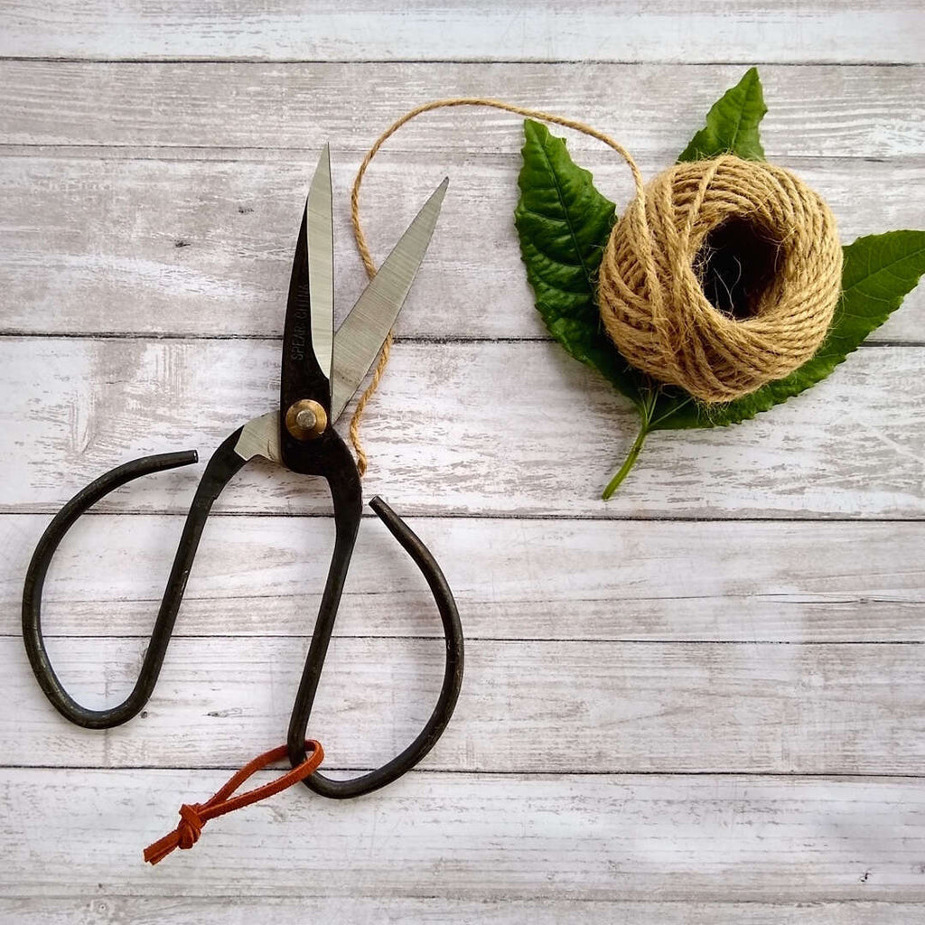 vintage style black steel bonsai scissors with leather hoop shown with hemp string