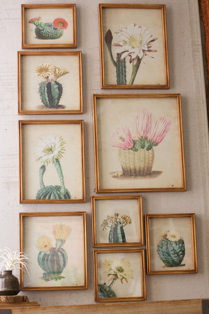 9 life-like cactus prints frame and behind glass