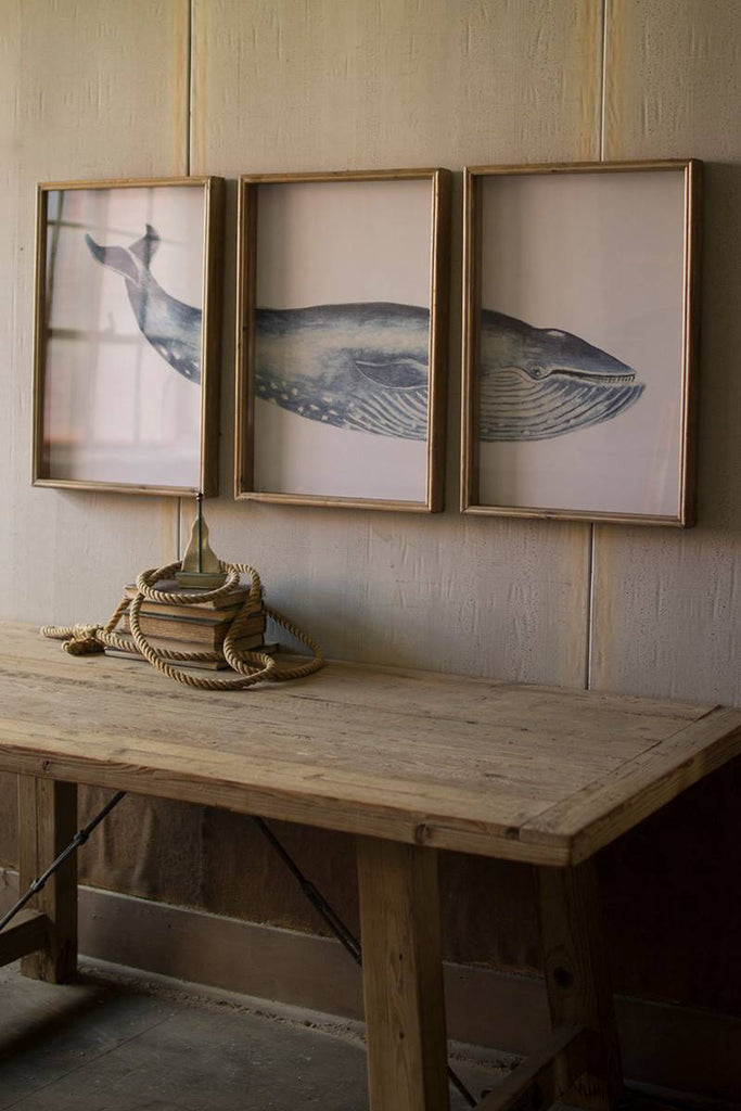 three piece whale print framed under glass