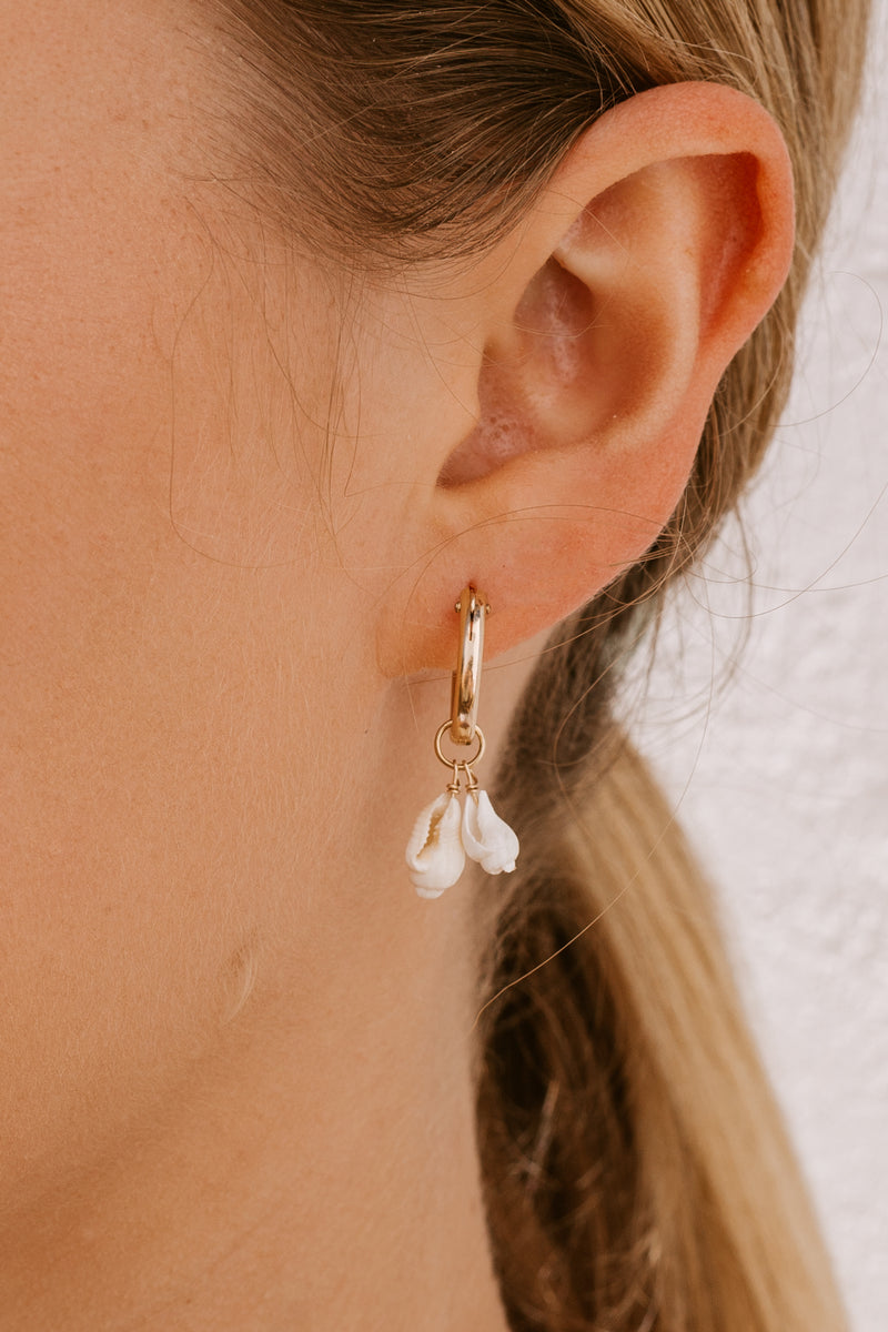 2 Shell Click Hoops - Gold fill