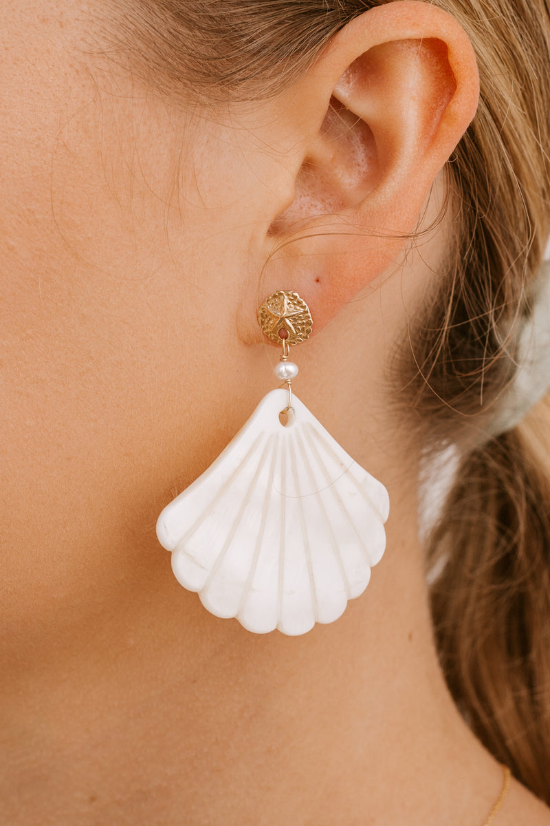 Sand Dollar & Pearl Shell Studs - Gold fill - Large