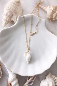Gold Fill Cone Shell Satellite Necklace, Necklace with  by Lunarsea Designs