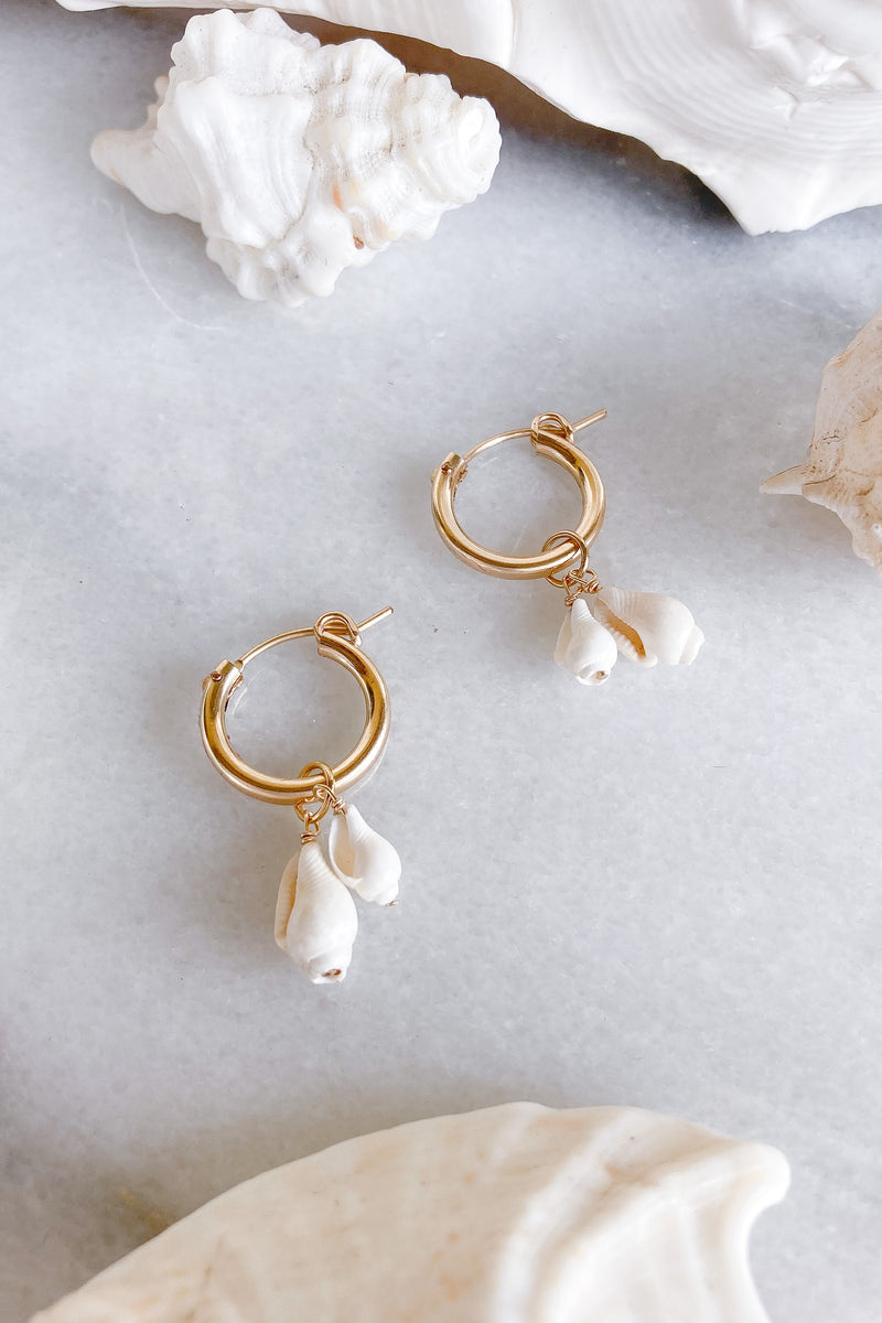 shell gold hoops earrings