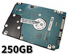 250GB Hard Disk Drive for Acer Aspire 5534 Laptop Notebook with 3 Year Warranty from Seifelden (Certified Refurbished)
