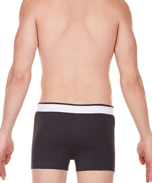 La Intimo Charcoal Men Zip Cotton Milange Spandex Trunk