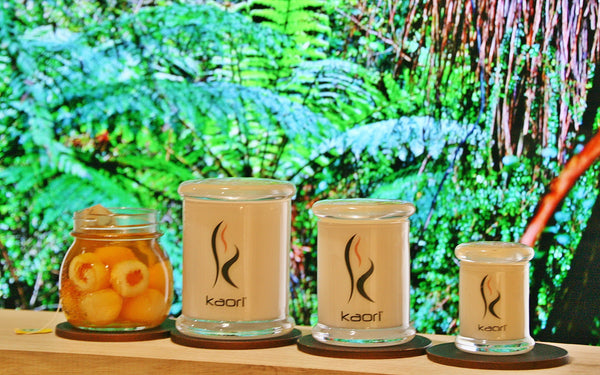 The Daintree Scented Candle