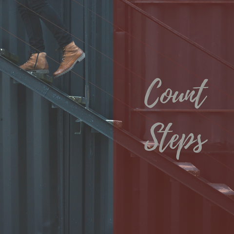 count steps the parenting journal
