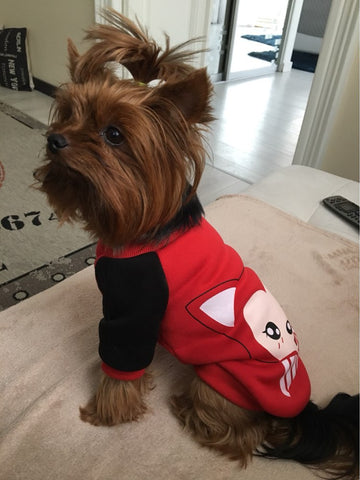 Ali Dog Sweater