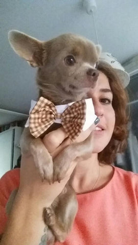 Cat/Dog Bow Ties Tan