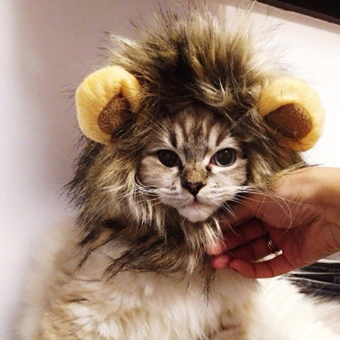 Lion Hair Mane Costume