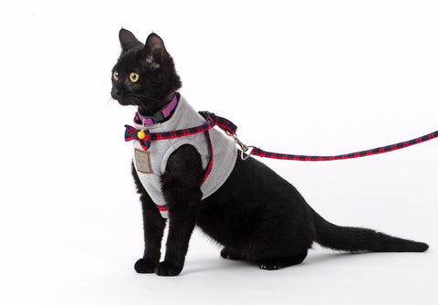 Cat Grey/Red Bow Tie Harnesses