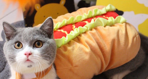 Cat Hot Dog Costume