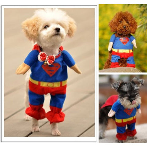 Full Superman Dog Costume
