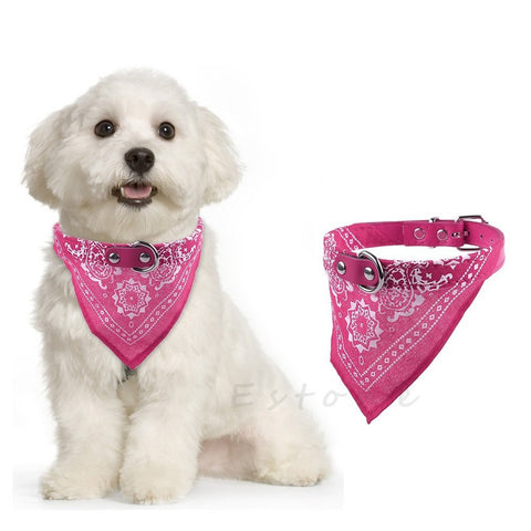 Dog/Cat Bandana Buckle Collar