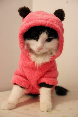 Soft Kitty Hoodie Pink