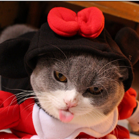Minnie Mouse Cat Costume