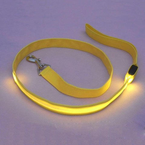LED Pet Leash