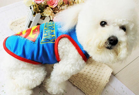 Superman Dog Tank Tops Blue