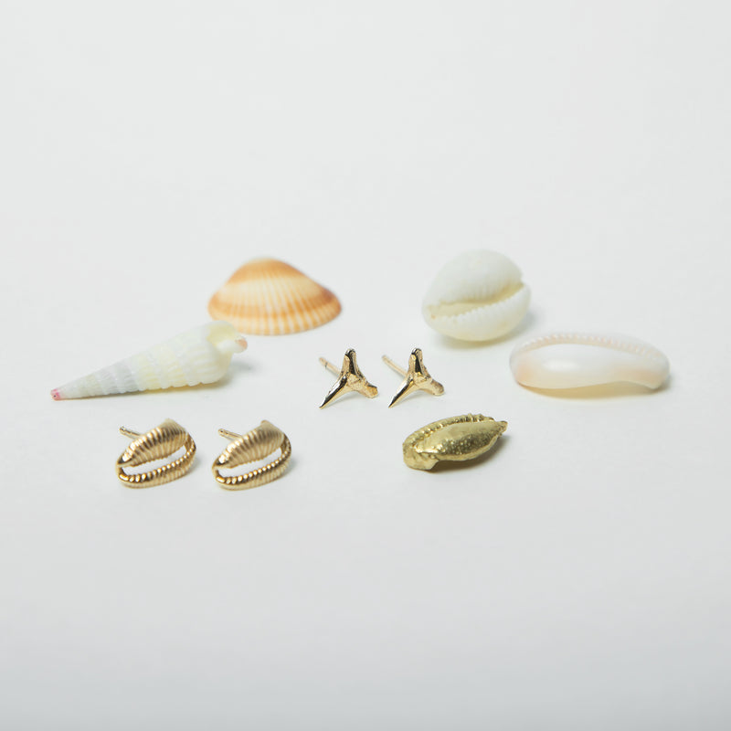 Sandy Seashell Studs