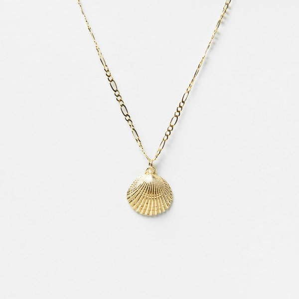 Siobhan Shell Necklace in Gold
