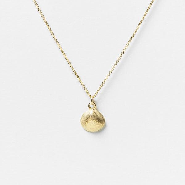 Baby Shell Necklace in Gold