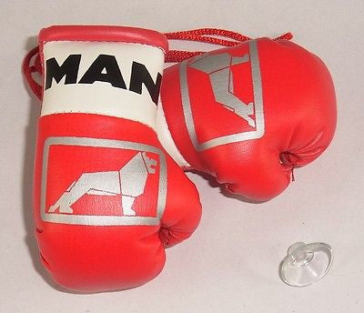 Man Trucks Mini Boxing Gloves for Lorries/Trucks.