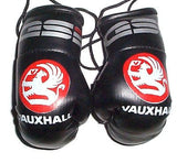 Vauxhall GSi  Mini Boxing Gloves rear view mirror