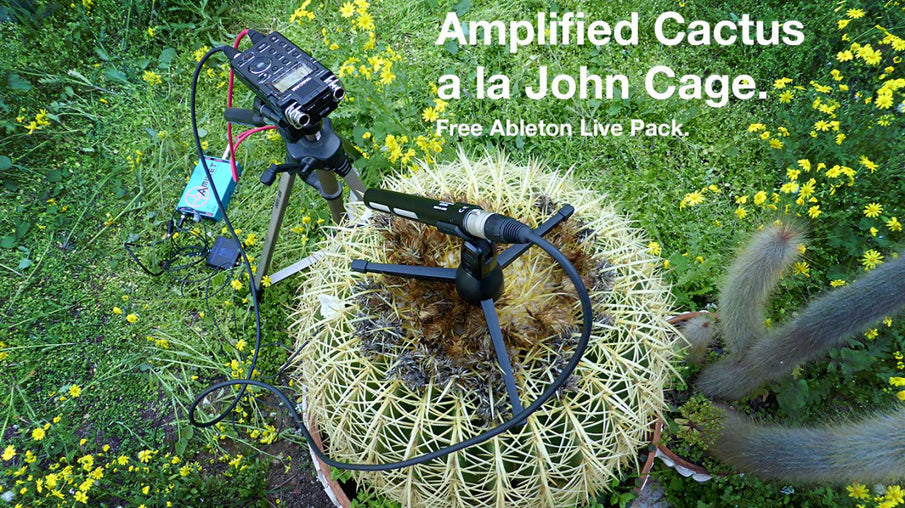 Amplified Cactus à la John Cage | Free Ableton Live Pack