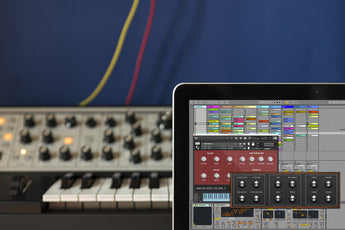 Analog Bass Buchla, Moog and Roland Samples Ableton Live Pack, Kontakt and Logic Instrument.