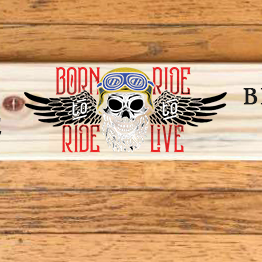 Shot Board, Shot Ski - Drinking Game - Can Customize!