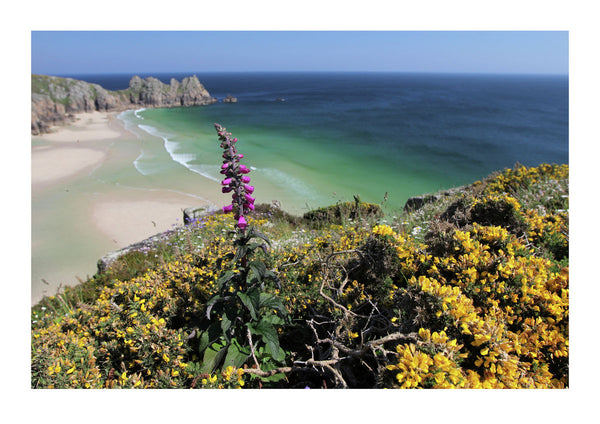 View of Pedn Vounder Beach and Logan Rock - Cornwall