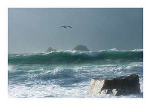 Big Surf at Cott Valley in Cornwall
